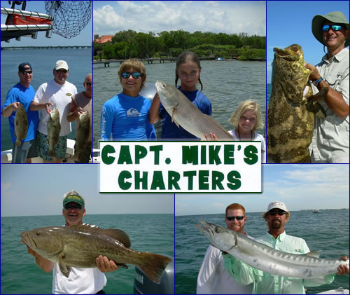 Capt mike 39 s charters on ami anna maria florida for Anna maria island fishing charters
