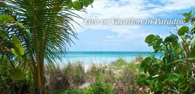Live or Vacation in Paradise 3