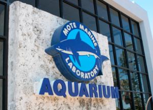Mote Marine Lab & Aquarium