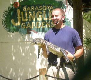 jungle gardens sarasota