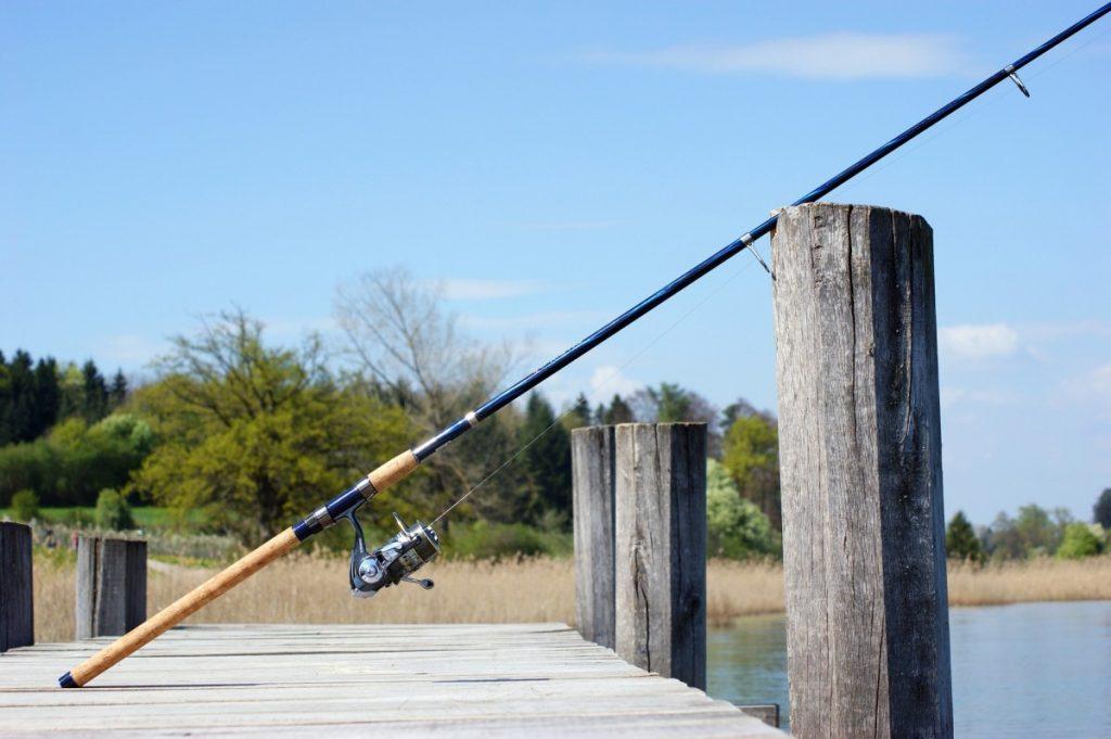 Robinson Preserve Fishing